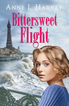 BITTERSWEET FLIGHT_high res small