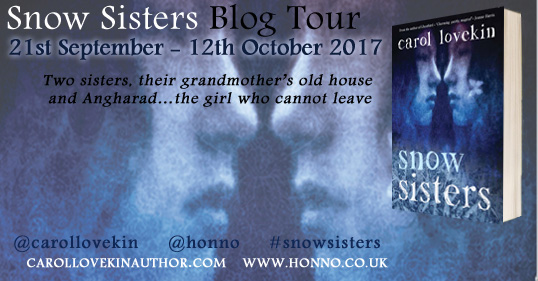 snow sisters blog tour poster